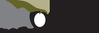 SA Olive logo