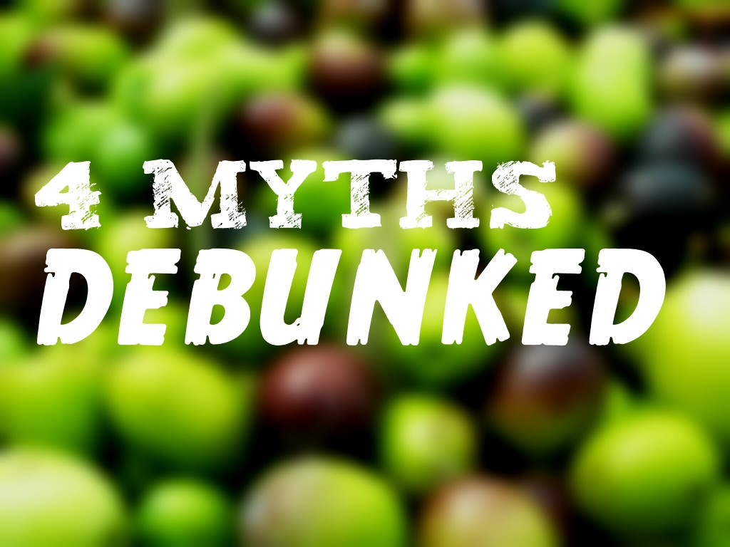 Olive oil myths