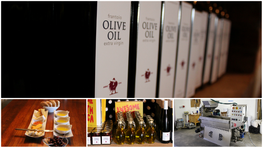 La Bourgogne olive oil