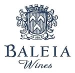 baleia logo smaller